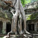 カンボジア旅行|2度目以降のアンコール