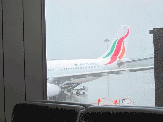 スリランカまでは直行便が出ており、飛行時間は9時間ほど、時差も3.5時間と時差ボケもあまりありません。