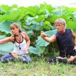 バンコク集合 Odaka Yoga創始者が本格的に教える指導者養成講座5日間