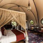 ワイルドコースト・テンテッドロッジ・ヤーラ|本格サファリとインド洋が出会うグランピングホテル