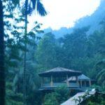 スリランカ|世界遺産観光とアーユルヴェーダ体験でココロとカラダに効くスリランカ旅行